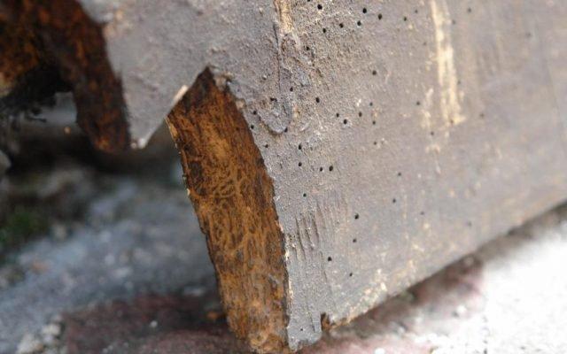 Детайл преди реставрация - повреда на основата