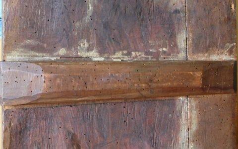 Иконата Св. Димитърна кон -гръб след реставрация