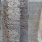 Картината Италианска циганка - автор Антон Митов - детайл след реставрация-4