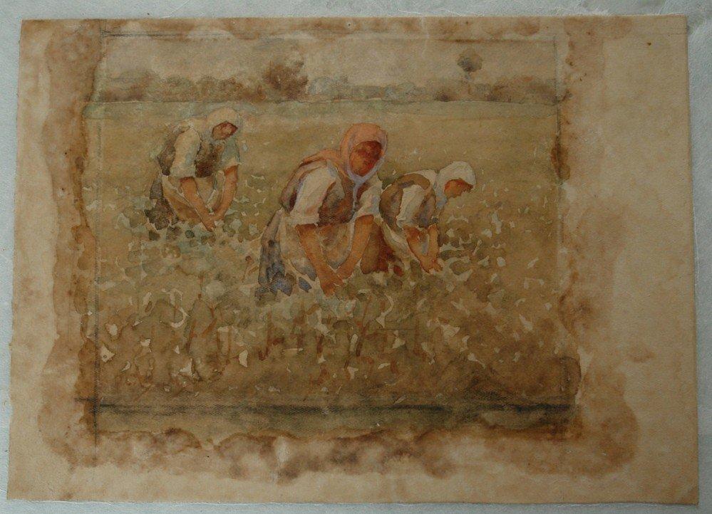 Рисунката Розобер - Ив. Мърквичка, след почистване реставрация